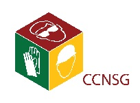 CCNSG – Web Logo
